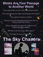 Librarians Sky Chasers Poster